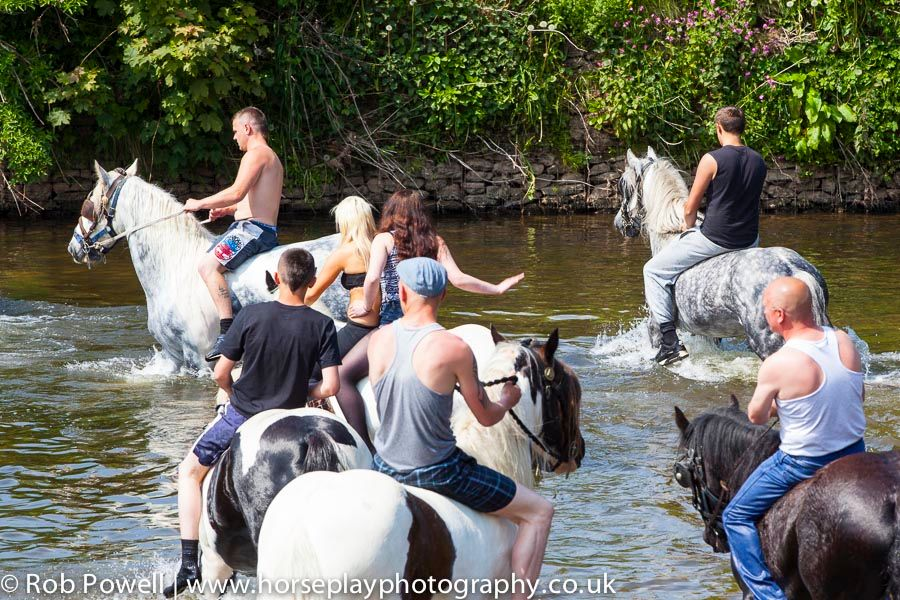 Appleby-Horse-4995