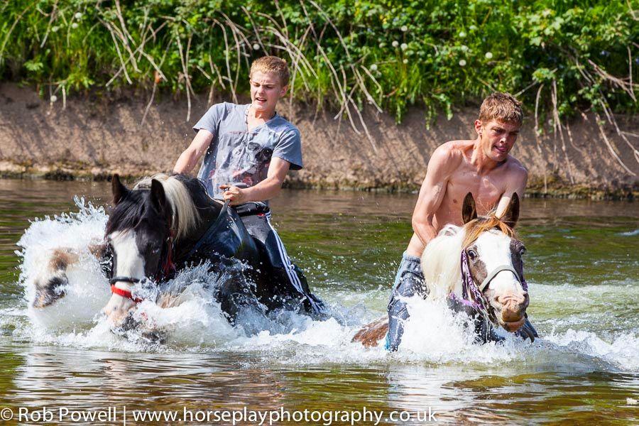 Appleby-Horse-5058