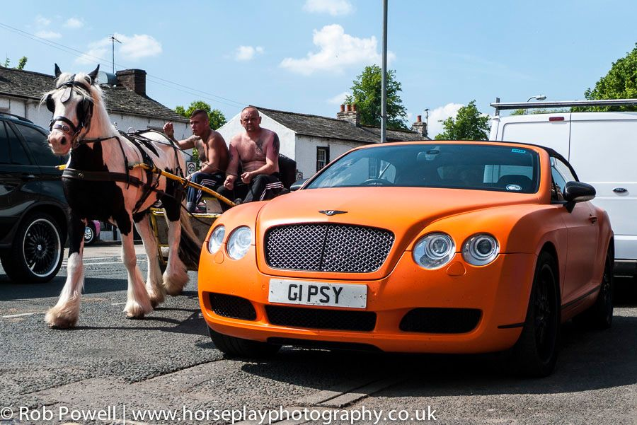 Bentley-Appleby-Horse-1040746