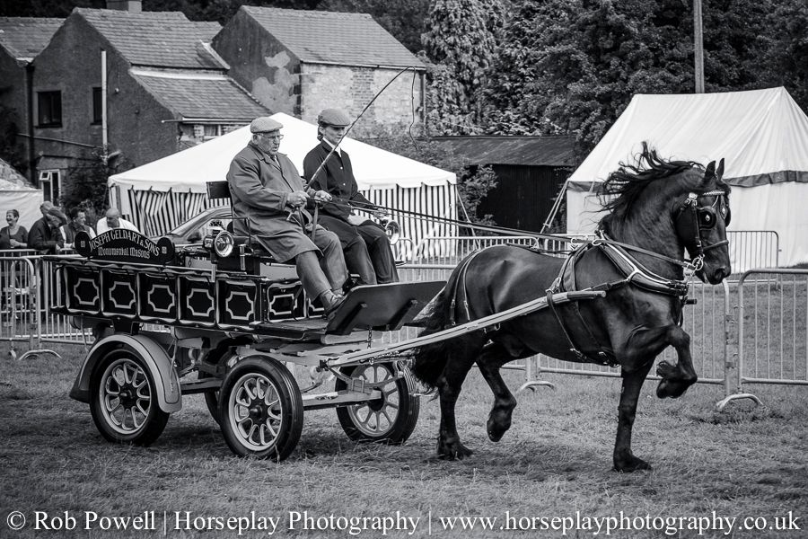 hackney-horse-1638