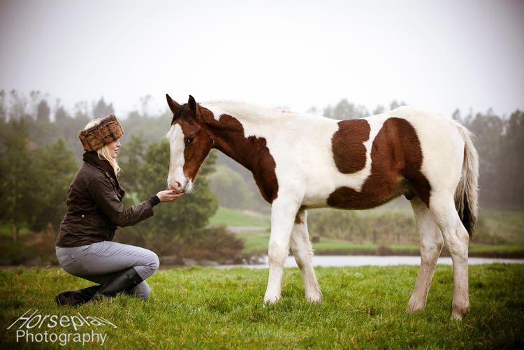horseplay--2