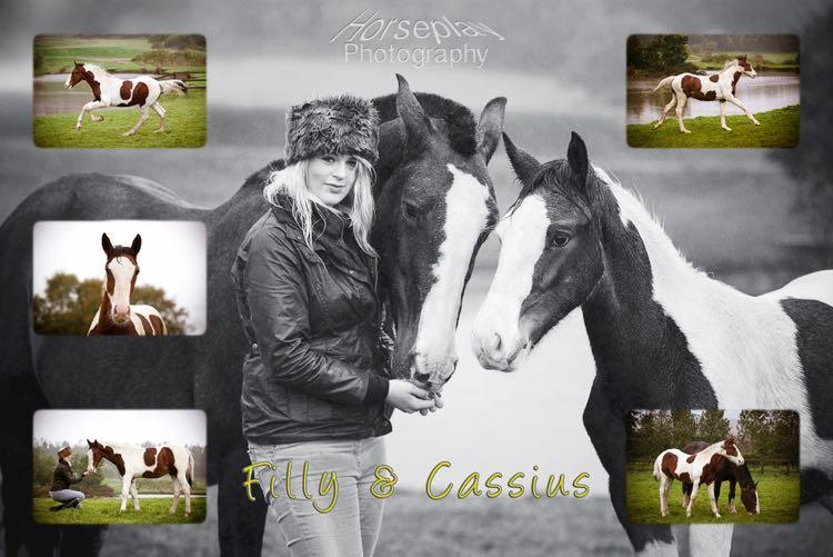 horseplay--7